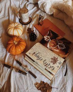 Autumn Cozy, Fall Winter, Thanksgiving Wallpaper, Autumn Aesthetic, Fall Wallpaper, Happy Fall Y'all, Hello Autumn, Autumn Inspiration, Fall Season