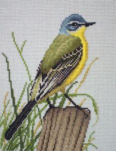 Cross Stitch Bird, Cross Stitch Animals, Cross Stitch Designs, Cross Stitching, Cross Stitch Patterns, Chicken Scratch, Needlepoint Pillows, Filet Crochet, Birds