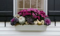 Learn how to welcome fall to your home with a window box full of autumn favorites./