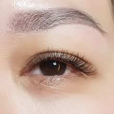 4D Russian Volume Eyelash Extensions   using 0.07