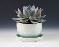 Crystalline Mini Small Planter Subtle Light White by MoonlitMethod