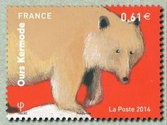 Kermode Bear (Ursus americanus kermodei)