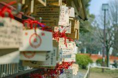 【TOKYO EAST】Everyday is Sunday; Walk around the Town of Ueno #Japan #Ueno #shrine #dream