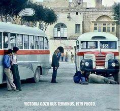 Malta Bus, Malta Gozo, Coaches, Maltese, Buses, Classic, Vintage, Derby, Trainers