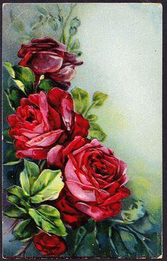 A0493 Flowers Embossed Roses vintage postcard