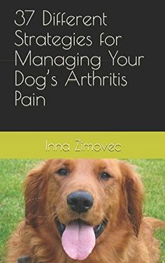 37 Different Strategies for Managing Your Dog's Arthritis...   It's heartbreaking to see your dog struggling with the symptoms of canine arthritis. Watching him struggle to walk around or get up from his bed is a daily reminder that he is in pain -- unrelenting, depression-inducing pain. But do not despair! There are a variety of different treatments people have employed in an effort to reduce the symptoms associated with canine arthritis – at least 36 by our count.
