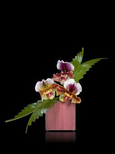 """Every flower about a house certifies to the refinement of somebody"" - ROBERT G. INGERSOLL - (Armani Fiori)"