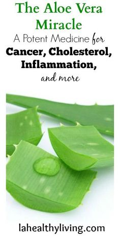 The Aloe Vera Miracle: a Potent Medicine for Cancer, Cholesterol, Inflammation, and more,, try our XFactor Multi Vitamin from Plexus that can help the body absorb 300% more nutrients than other expensive and over the counter vitamins!!
