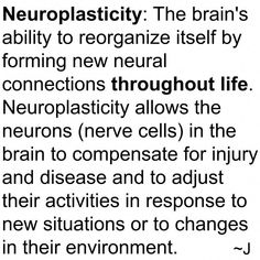 Our Brain's Amazing Healing Neuroplasticity Facts! Psychology Graduate Programs, Counseling Psychology, Psychology Facts, Cognitive Psychology, Cognitive Therapy, Neuroplasticity, Neuroscience, Tramatic Brain Injury, Neural Connections