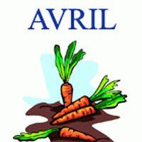 Les Fruits et Légumes à Acheter Frais en Avril.