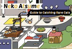 Neko Atsume Guide
