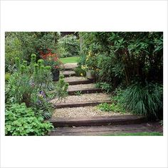 Log stairs with gravel: for path to coop