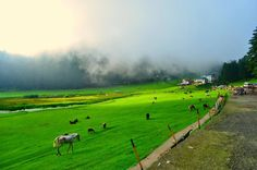 beauty of himalyas
