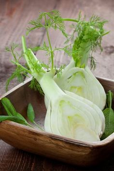 One of my favorites HCG Vegetable Fennel. Learn about the health benefits of Fennel plus HCG Phase 2 Diet and Fennel recipes. Detox Tips, Detox Recipes, Benefits Of Fennel, Detox Day, Fennel Recipes, Hcg Diet, Easy Salads, Medicinal Herbs, Cool Plants