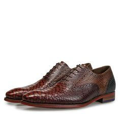 Looking for a special leather lace shoe for the colder season? Check out this dark cognac-coloured leather lace shoe with a snake print at the Floris van Bommel shop. Leather Shoe Laces, Leather And Lace, Snake Print, Derby, Oxford Shoes, Dress Shoes, Vans, Lace Up, Color