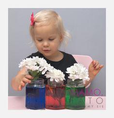 10-eksperymentow-dla-dzieci-kolorowe-kwiaty Kids And Parenting, Science, Education, Sport, Deporte, Sports, Onderwijs, Learning