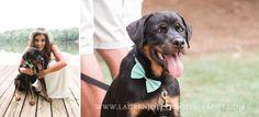Rustic Wedding PhotographerRustic Wedding Photographer Lake wedding Dog wedding  rotweiller