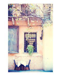 Dreamy Verona