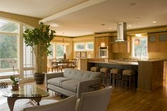 Great design idea for creating an open, but well-defined, smaller-scale, living/dining/kitchen area.