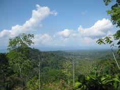 Beautiful views of the Gulfo Dulce from the Corcovado Park El Tigre trail in Dos Brazos de Rio Tigre, opened in February 2015.