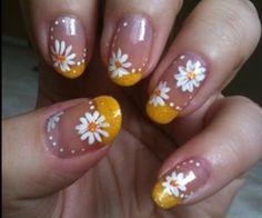 Yellow/daisies