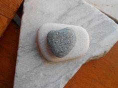Ciottolo di mare a forma di cuore cuore di di lepropostedimari