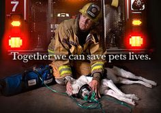 Project Paws Alive, a non-profit organization, has joined with presenting sponsor Rossmoyne Animal Emergency Trauma Center to kick-off its fundraising effort to provide Pet Oxygen Recovery Mask Kits for six Fire/EMS agencies in parts of the Harrisburg, PA area.