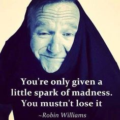 Spark of insanity-Robin Williams #quote