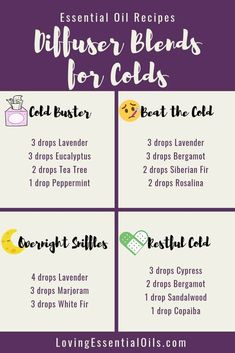 Young Living 320248223502365586 - 6 Diffuser Blends for Colds with Free Cheat Sheet by Loving Essential Oils Source by lovingeo Essential Oils For Colds, Essential Oil Diffuser Blends, Young Living Essential Oils Recipes Cold, Essential Oil Cold Remedy, Humidifier Essential Oils, Essential Oil Congestion, Oils For Diffuser, Anti Viral Essential Oils, Uses For Essential Oils