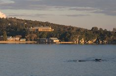 Quarantine Station, Manly, Australia