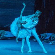 Svetlana Zakharova as 'Odette' / David Hallberg as 'Prince Sigfried' in ballet #SwanLake @officialzakharova @davidhallberger #SvetlanaZakharova #DavidHallberg. #BolshoiTheatre #BolshoiBallet #ballet #ballerina #dancer #balletshoes #balletdancer #balletclass #balletlife #instadance #instagood #balletlove #tutu #flexible #flexibility #photooftheday #love #balletpost #pointe #pointeshoes #beauty #beautiful #follow4follow #like4like