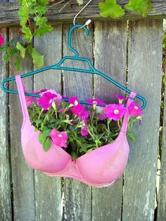 Seriously???  The crocs as planters are cute, but a bra????