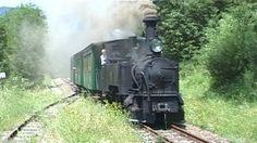 Steam locomotive passing in scenic landscape