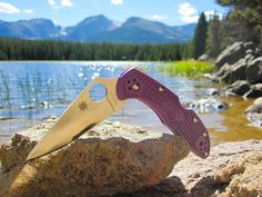 My Wife's new Purple Spyderco Delica Spyderco Knives, Knives And Tools, Folding Knives, Edc, Things To Come, Purple, Clothing, Outfits, Butterfly Knife