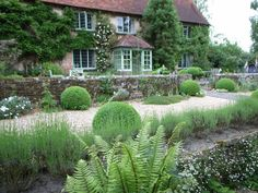 /\ /\ . Jake Hobson . cloud pruning & organic topiary . Sandhill Farmhouse