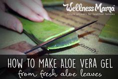 How to make aloe vera gel from fresh aloe leaves