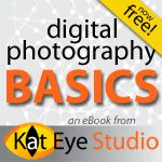 FREE e-book to learn how to shoot in manual