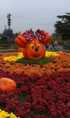 Creative Pumpkins, Pumpkin Art, Painted Pumpkins, Euro, Memories, Paris, Halloween, Fall, Inspiration