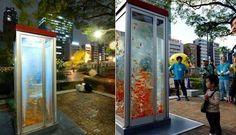 En Osaka convierten las cabinas telefónicas en peceras gigantes