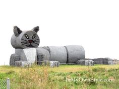 they are hay bales made to look like a cat