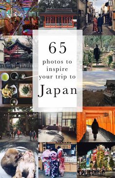 Looking for inspiration for your trip to Japan? Here's a guide in 50 photos with tips and and advice for planning a trip to Japan. Japan Travel Guide, Asia Travel, Solo Travel, Used Travel Trailers, Japan Guide, Travel Photos, Travel Photography, Photography Tips, Travel Inspiration