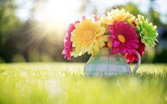 Kwiaty, Gerbery, Dzbanek, Trawa