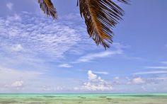 Strand, Sansibar © Carina Dieringer