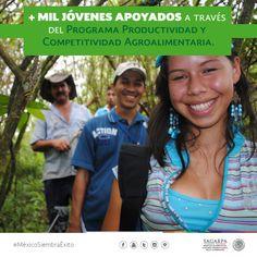 +Mil jóvenes apoyados a través del Programa Productividad y Competitividad Agroalimentaria. SAGARPA SAGARPAMX #MéxicoSiembraÉxito