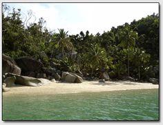 rainforest-beach Mission Beach, Islands, Board, Island