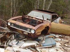 1967 Camaro going to waste, what a shame!