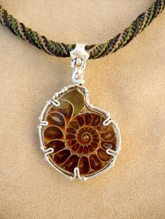 Hey, I found this really awesome Etsy listing at http://www.etsy.com/listing/94678574/ammonite-necklace-for-men-in-green-and