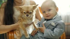 Your Dog Doesn't Like Kids? 5 Things You Can Do Best Dog Breeds, Best Dogs, Dogs And Kids, Dog Owners, You Can Do, Your Dog, 5 Things, Children, Lovers