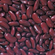 Dark Red Kidney Bean Seeds | Dry Bean Seeds | Shell Bean Seeds | Buy Bean Seeds | Dry/Shell | Beans | Vegetable Seeds | Jung Garden and Flower Seed Company