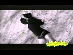 Beavis and Butt-Head love White Zombie [3 videos]